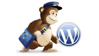 how to add mailchimp newsletter to wordpress blog